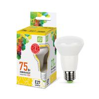 Лампа светодиодная LED-R63-standard 8Вт 230В Е27 3000К 720Лм ASD 4690612001616